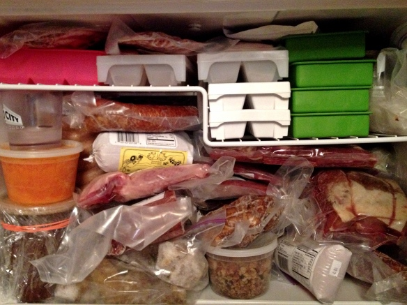 Freezer Full of Meat