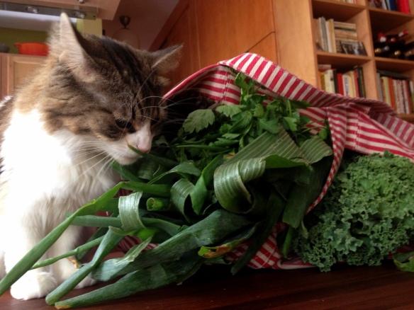 Oona and Veggies