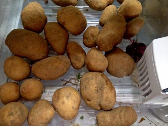 Poatoes