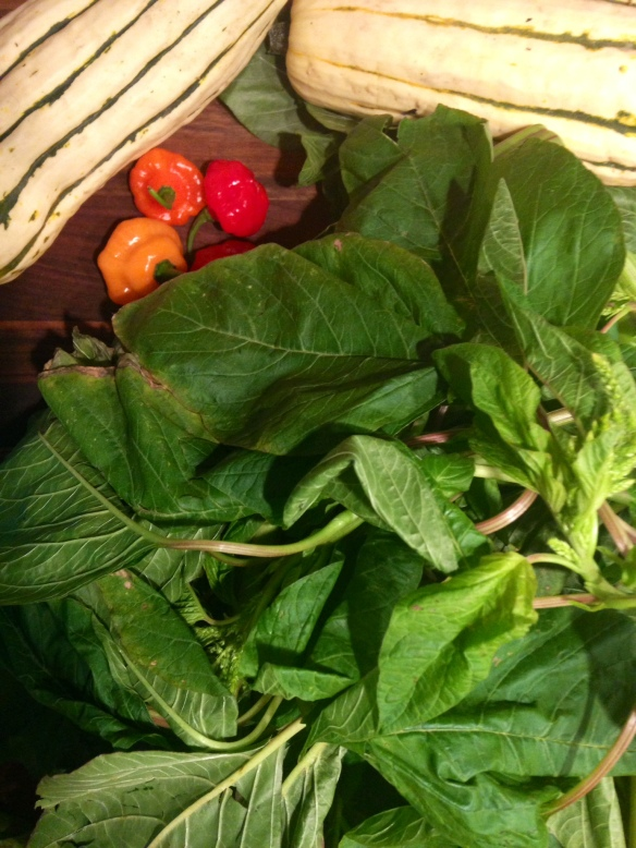 Callaloo Squash and Scotch Bonnets