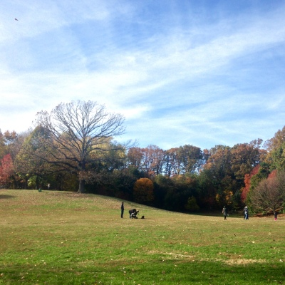 Fall Day in Prospect Park