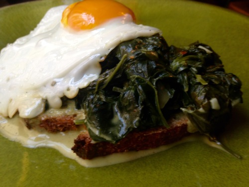 Eggs Ovine