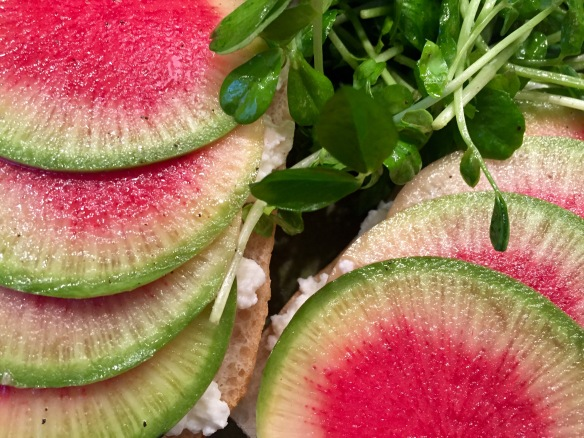 Watermelon Radish and Ricotta Tartine