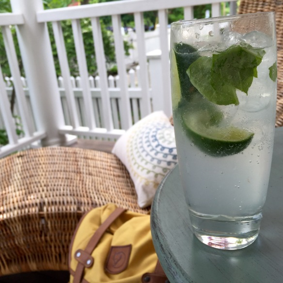 Basil Gin and Tonic