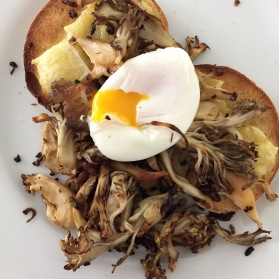 Mushrooms Cheese Poached Egg